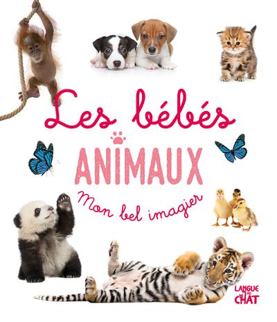 Mon bel imagier photo - Les bébés animaux -  Livre d'éveil imagier photo - Dès 6 mois
