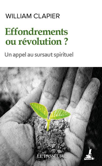 Effondrements ou révolution ?